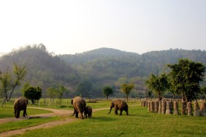 EP_blog_6_large_chiang_mai