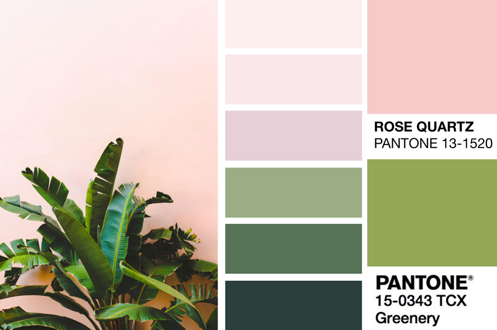Greenery and Rose Quartz Colour Palette