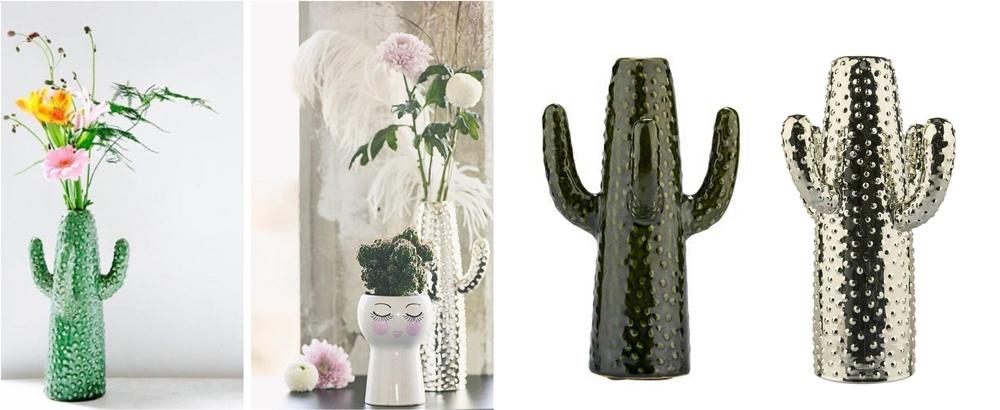 Houseplants Cactus Vase