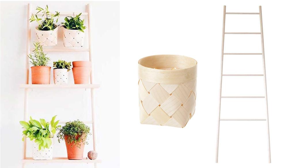 Houseplants Verso Design Ladder