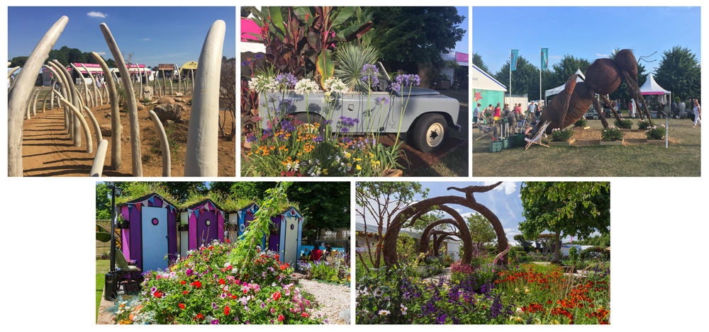 RHS Hampton Court Flower Show Features